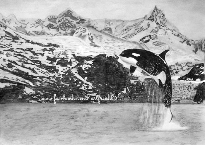 KILLER WHALE (Final) by LostInTheRainAgain