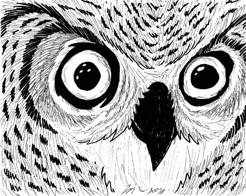 Owl 2018 by AberzombieLiche