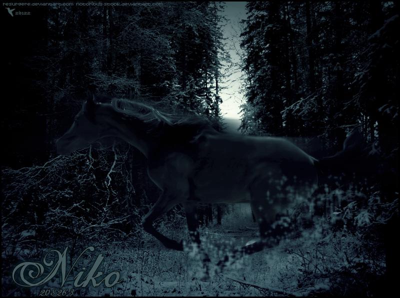 Niko by xxtgxxstock