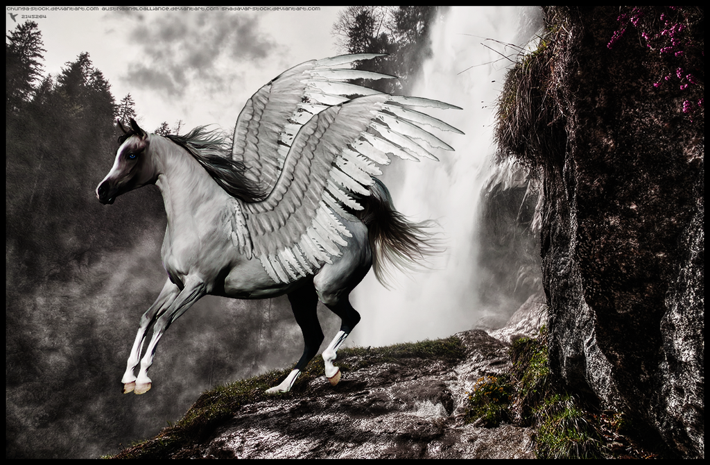 Pegasus by xxtgxxstock