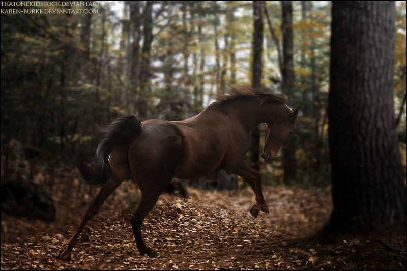 Running Away by xxtgxxstock