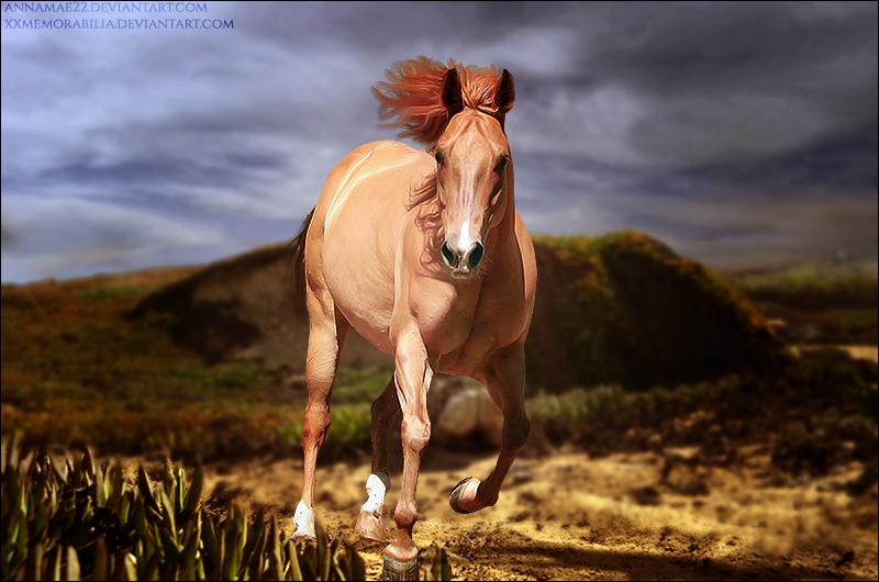 Sands Of Time by xxtgxxstock