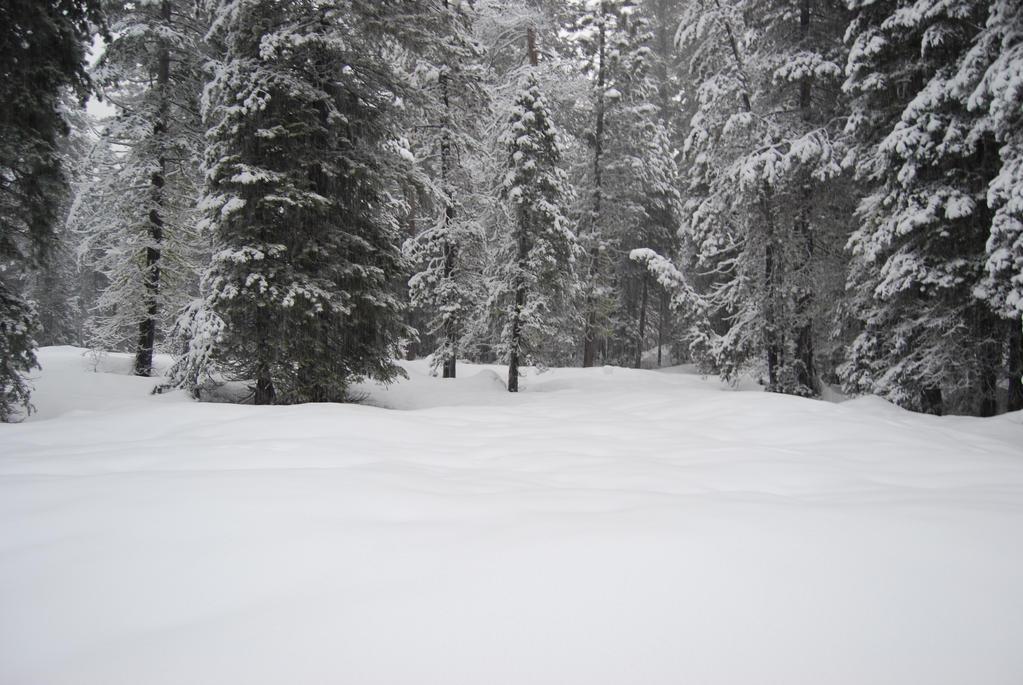 Snowy Background 3 by xxtgxxstock