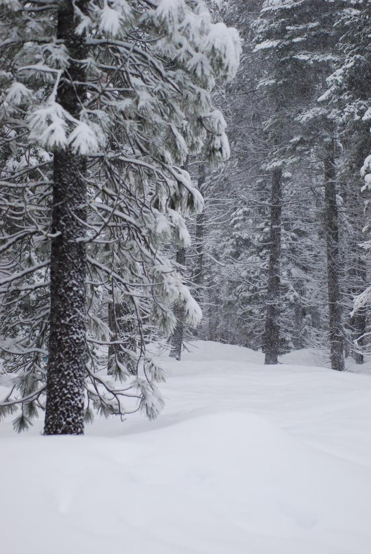 Snowy Background 5 by xxtgxxstock