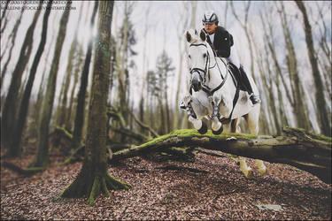 Jump Higher by xxtgxxstock