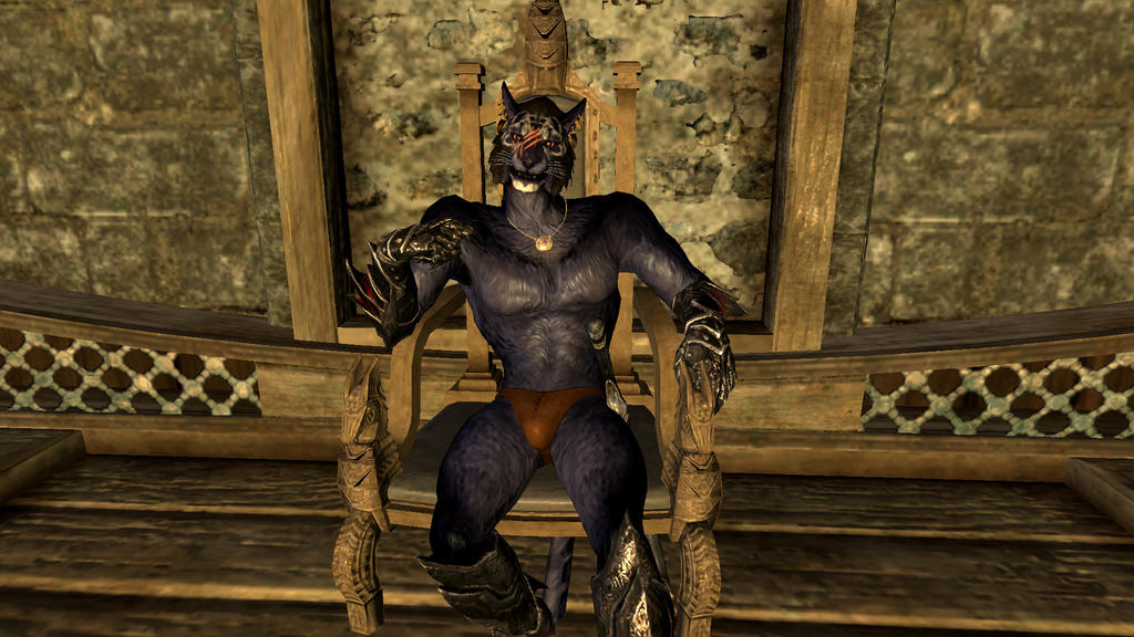 skyrim how to get a mod with naked men
