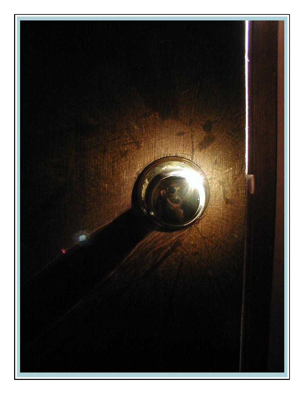 Door Texture by im-not-jose