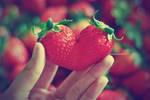 strawberry heart by lisz