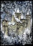 Le Chateau de Puymartin