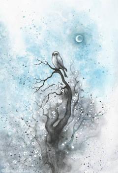 Owl on a tree