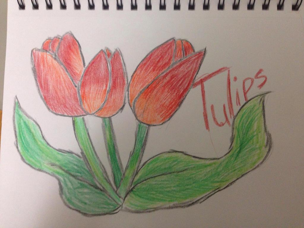 Tulips by VinnieValentine00