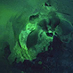 worbyfx's Profile Picture