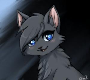 Warrior Cat Ravenstone