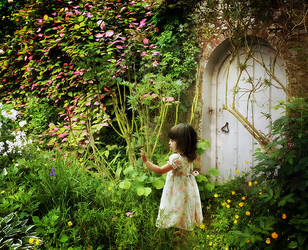 Secret Garden by kayceeus