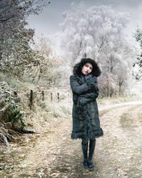 Winter Walk by kayceeus