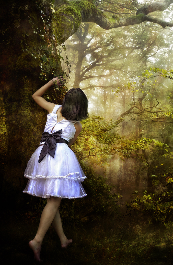 Enchanted Forest by kayceeus
