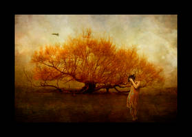 Somnolent Days by kayceeus