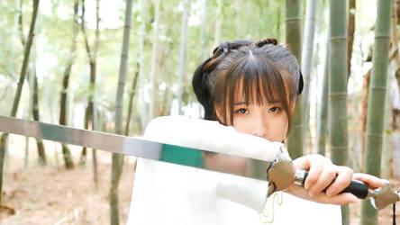 Ancient Chinese Swordsman