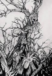 The grove by Dani3lmatui