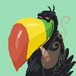 TOUCAN the stoney-eyed funny curious bird by angrybudcom