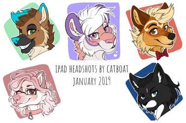 iPad Headshots - January 2019 by CAT-BOAT