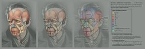 Advanced Head Construction - 12 Anatomy vs Abstrac