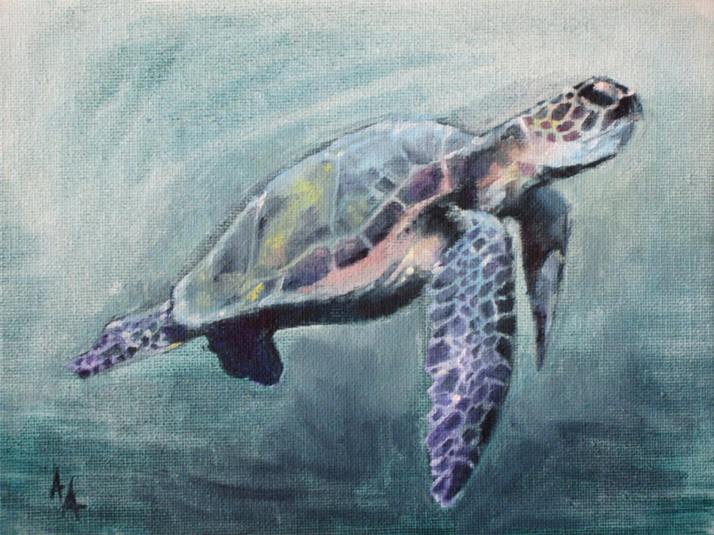 Sea Turtle by AdamAntaloczy
