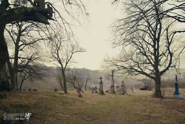Walk through the Graves I by GinnungaSeidr