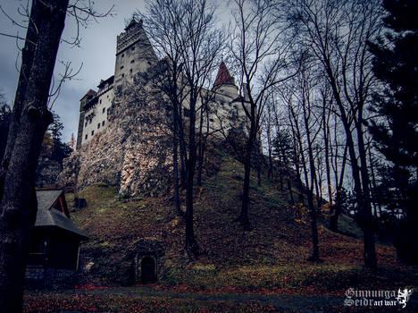 Bran Castle I