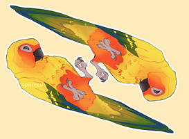Catch You on the Flippity Flip by SPARROUU