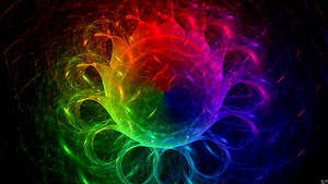 Jellyfish Color Palette