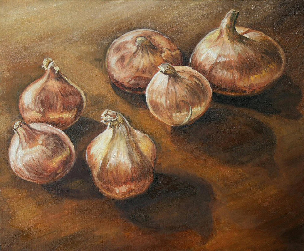 Onions by angryskipper