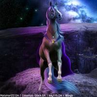 Webp.net-compress-image by wsl30horselover10