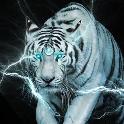 Tundacat lightning tiger