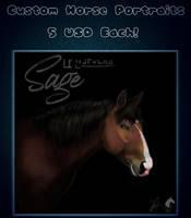 Horse portrait Comissions