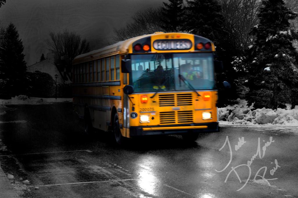 Bus by mydragonzeatyou