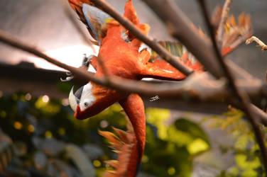 Upside Down Red Macaw by mydragonzeatyou