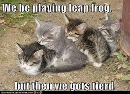 Leap Frog by JackieReaper