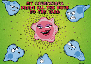 My chemokines bring all the boys to the yard! by Velica