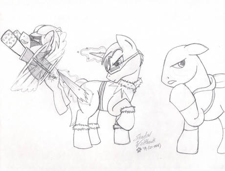 Pony Rogues003