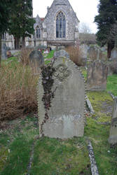 Old Grave with Ivy