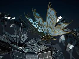 Butterfly by MixJoe