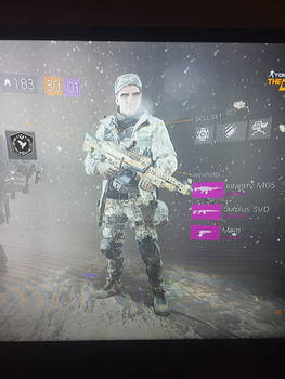 Me in the Division (Max level)