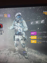 My division agent (Underground  Dark Zone)