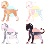 Dog adopt Auction (CLOSED!)