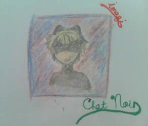 Chat Noir (ML)