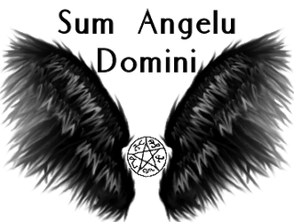 Profile Wings (Black) by iamontda