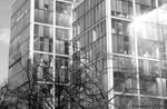 Life in the City III by MonochromesOfLiv