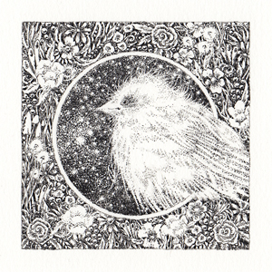 Windy Day Sparrow by socar