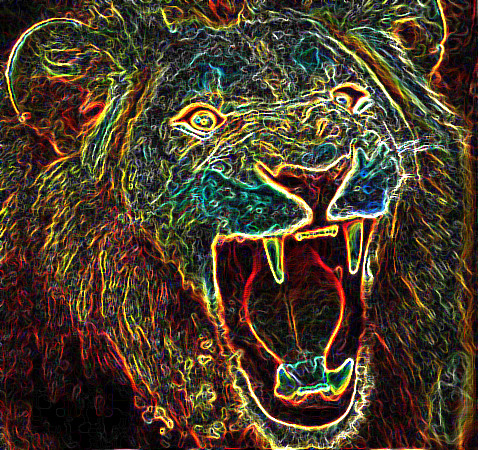 Images Of Psychedelic Trippy Lion Wallpaper Calto